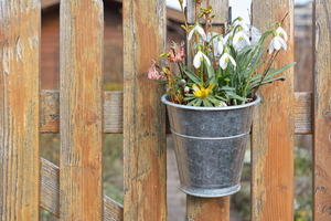 7 Ways to Dress Up Your Fence
