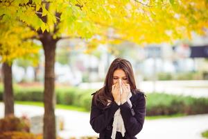 Combating Fall Indoor Allergens