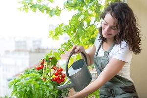 How to Grow a Balcony Vegetable Garden