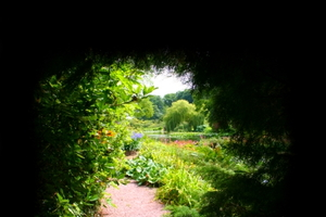 Create a Secret Garden
