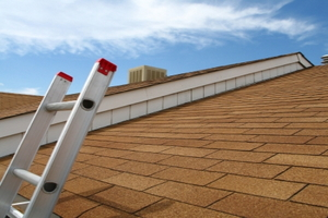 Roof Leaks - Cut Your Expenses Before You Call for Help