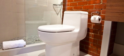1 Piece Toilets And 2 Share Many Things In Common They Both Serve The Same Purpose Most Of Them Go About It By Flushing Way