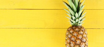 Tips For Growing Pineapples Doityourselfcom