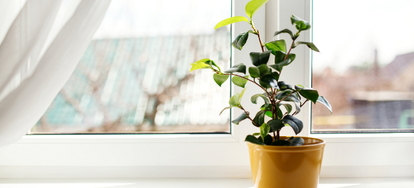 if you want a garden window for your home but are afraid of high garden window prices dont fret there are a couple of ways you can cut costs to stay - Garden Window Prices