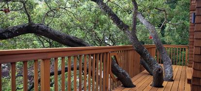 Wood Deck 418079 Jpg