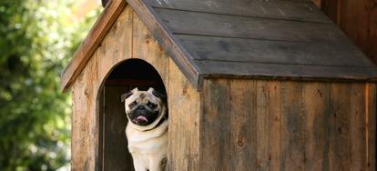 6 ways to make a heated dog house doityourself com  wiring for light dog house #9