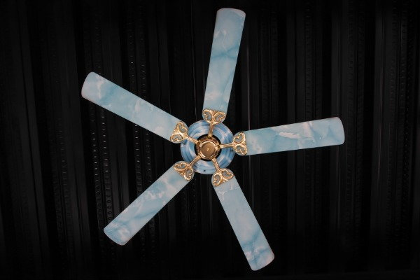 painted celing fan