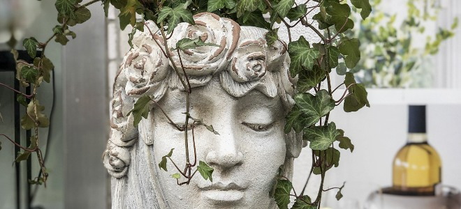 statue head shaped planter with ivy