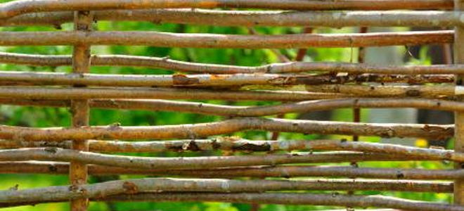 Rustic Low Cost Fencing Options