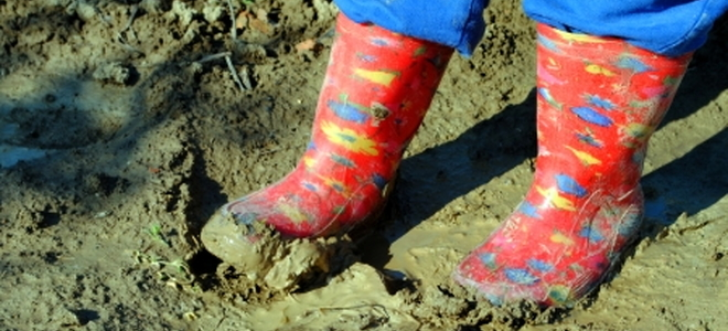 5 things to know about clay soil for 5 facts about soil