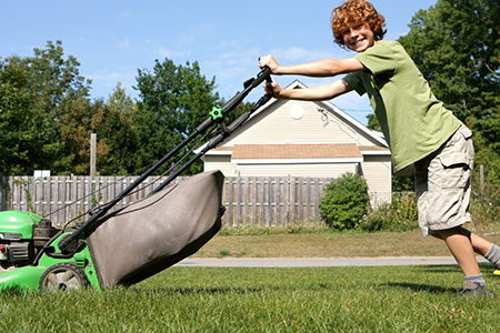 Image result for house chores lawn
