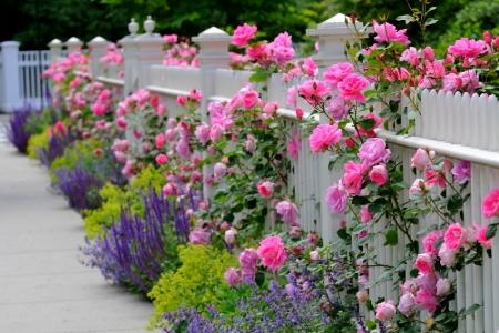 Three Decorative Garden Fence Ideas DoItYourselfcom