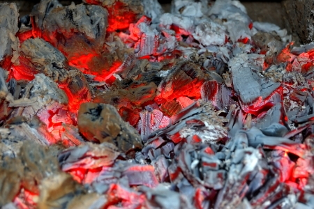 How to Use Firewood Ash as Fertilizer | DoItYourself.com