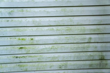 Cleaning Vinyl Siding Doityourself Com