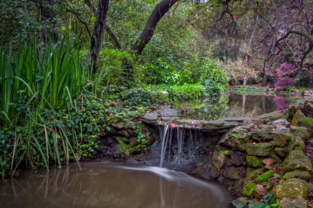 Diy natural swimming pool for Do it yourself pond