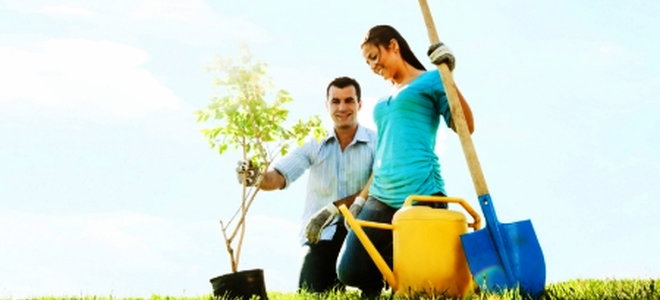 Cheerful young couple planting a tree.