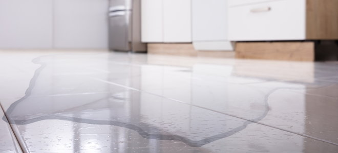 leaking puddle in the kitchen near the refrigerator