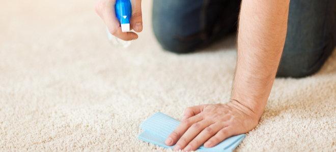 pulvérisation et buvardage des mains pour nettoyer un tapis