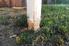 Worn mailbox post