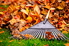 A pile of autumn leaves with a rake.