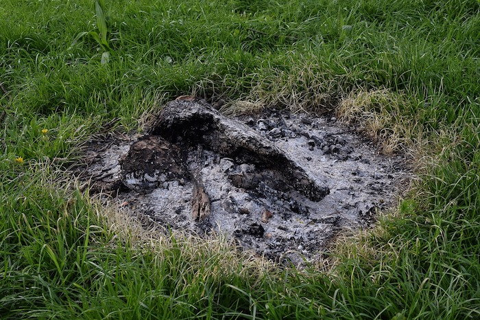 How To Fix Acidic Soil Organically