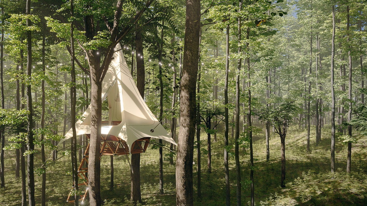 One of O2 Treewalkers' Customizable glamping tents set up in a forest area.
