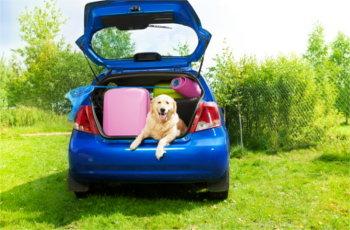 maintenance tips, cars, automotive