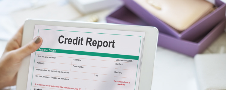 The  Basics  of  Checking  Your  Credit  Reports