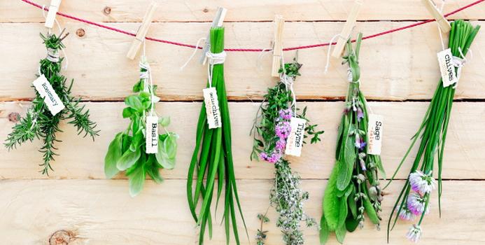herbs_000033284810_Small.jpg