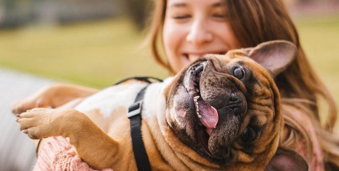 Image result for pet owner
