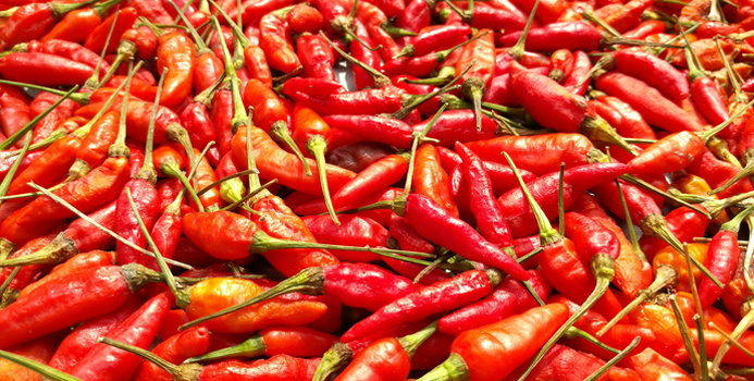 the top 10 health benefits of spicy foods nutrition