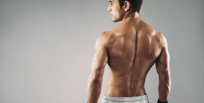 back muscle_000044635862_Small.jpg