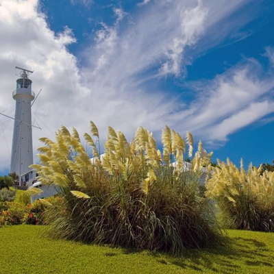 Caribbean Travel Guide Fodor S Travel