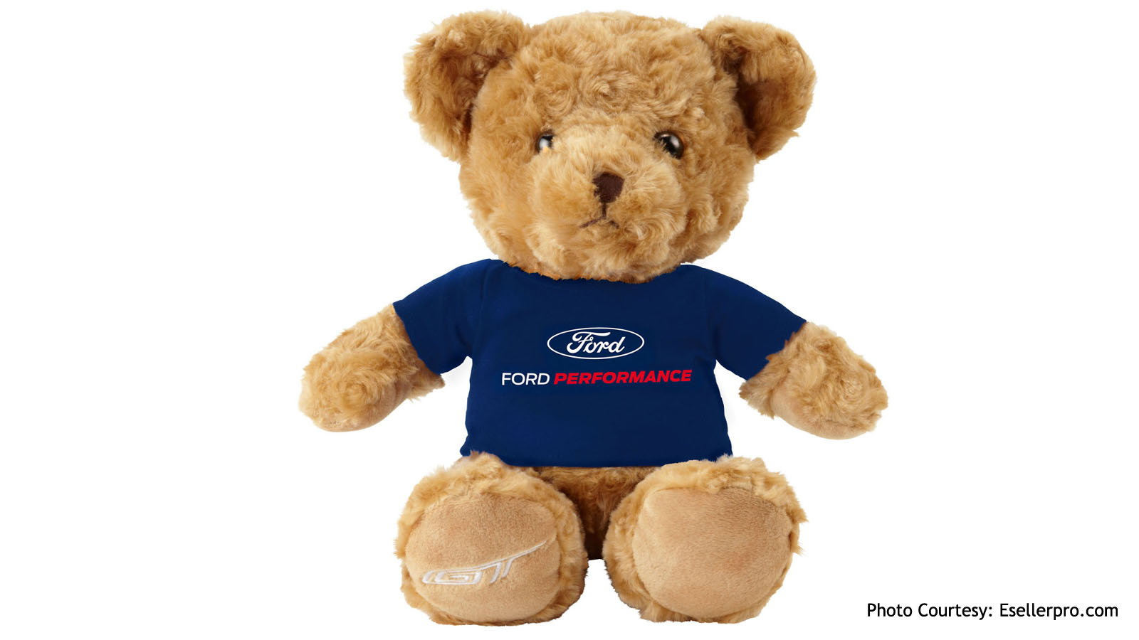 Ford's Teddy Bear