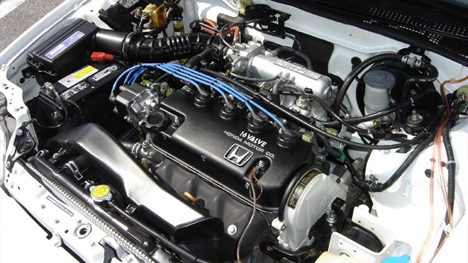 Honda How To Clean Engine Bay Honda Tech