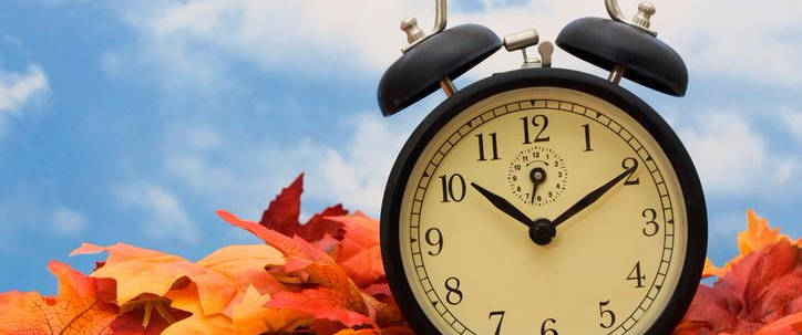 clock and leaves slow pokes and lolly gaggers 5 great time management skills to teach your kids
