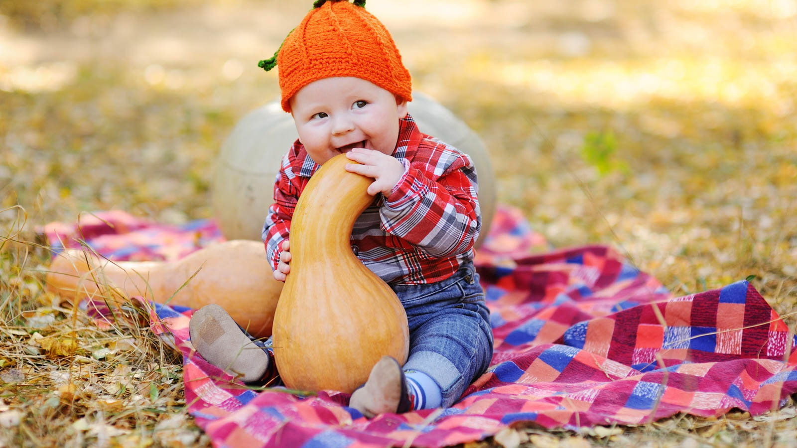 baby with a pumpkin in the park