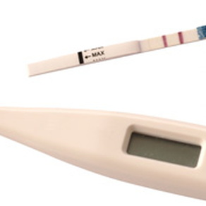 fertility thermometer