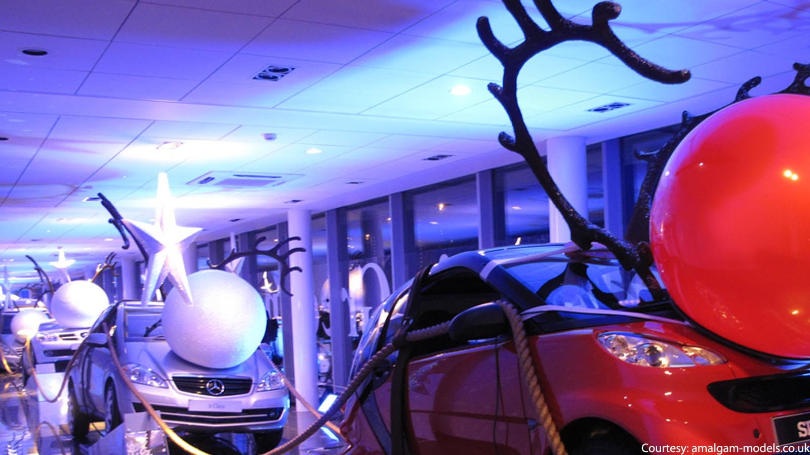 Reindeer or Santa Suit