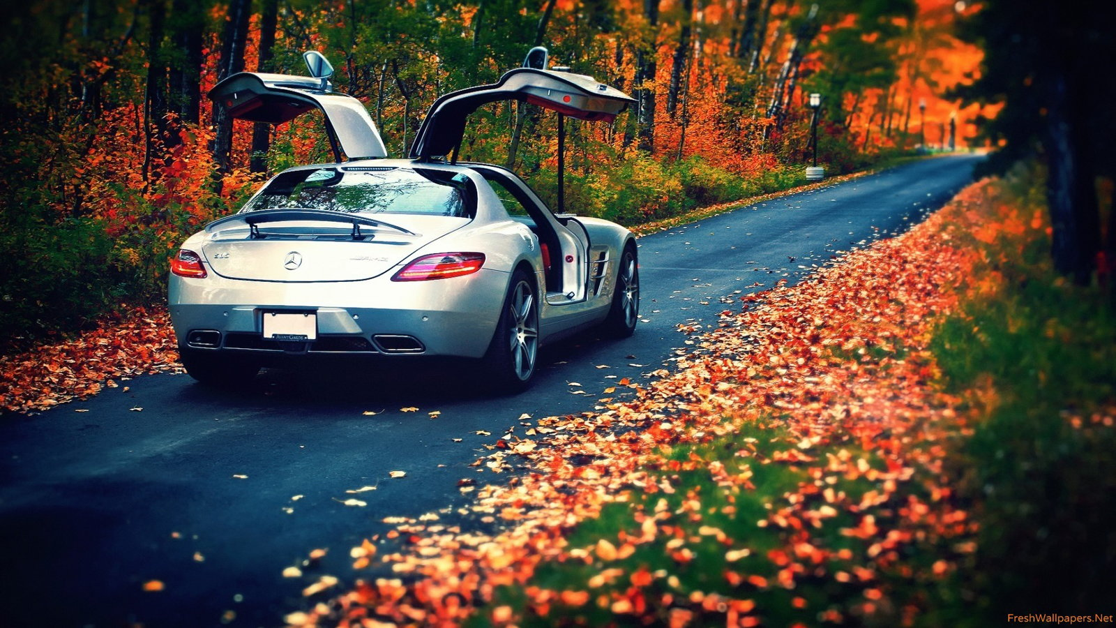 Beautiful Mercedes-Benz Autumn Wallpapers