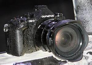olympus_omd_em1_ice.jpg