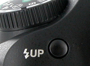 Pentax K100D Super , image (c) 2007 Steve's Digicams