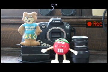 canon_300HS_rec_movie.jpg