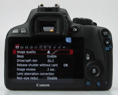Back view.jpg