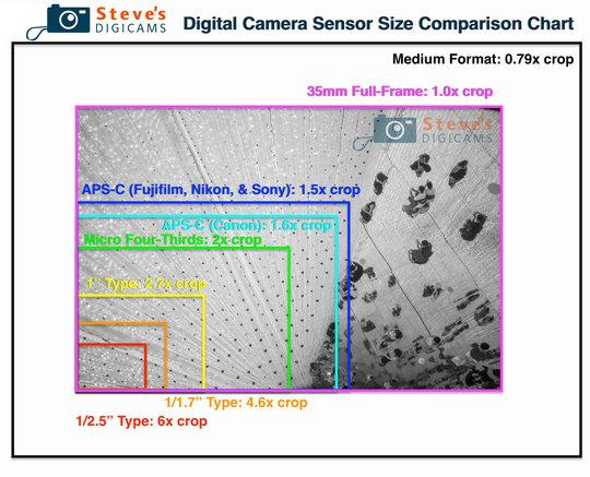 DigitalCamerasSensorSizes-2019.jpg