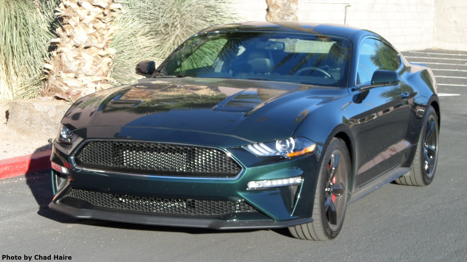 2019 Ford Mustang Bullitt Up Close and Personal