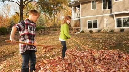 A pair of siblings raking leaves in the front yard.
