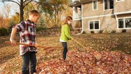 A pair of siblings raking leaves in the front yard.