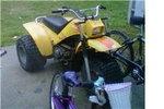 My Trike