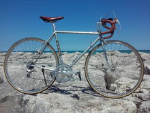 1980 Fuji Newest  Additional Notes:  Saddle - Selle Anatomica X in Vintage on an SR LaParade post. (Post changed to Suntour Superbe SP-1000 in June-2017) Handle Bar Tape - Fizik SUPERLIGHT Microtex, Honey Brown Tires - Panasonic Pasela PT 700 X 25C Wheels - Ukai with Suntour LaPree Hubs (Changed to Sun CR-18's with Suntour Superbe RH-1000 Hubs in Jan-2018) Suntour Skewers front and back